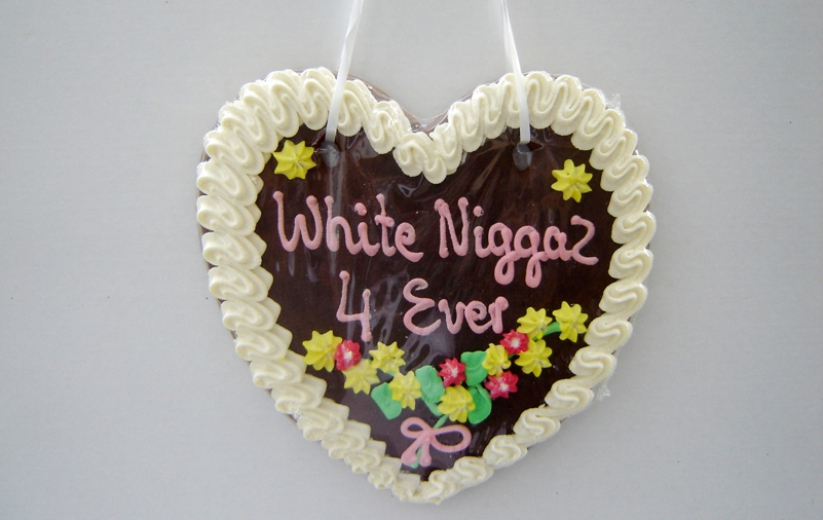 Voices from the Heart / White Niggers 4ever